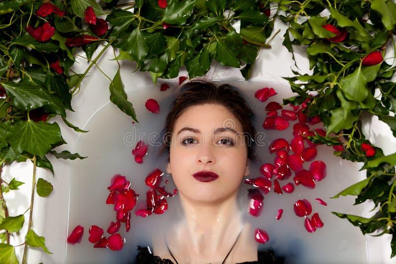 Hera das folhas das rosas vermelhas do banho maria do leite da menina fotos de stock