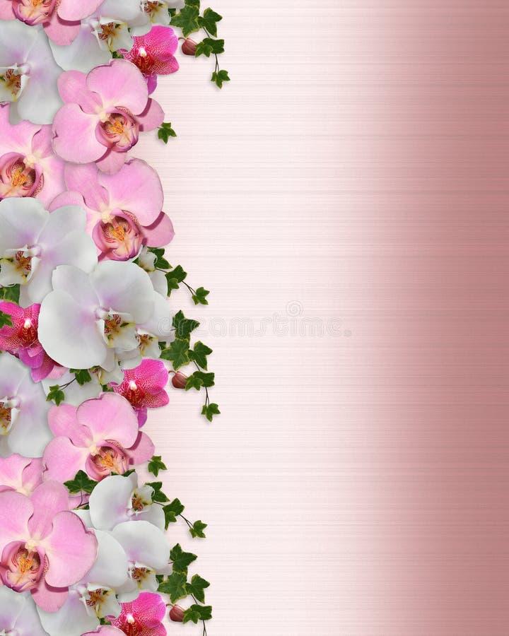Hera das orquídeas da beira do convite do casamento ilustração royalty free