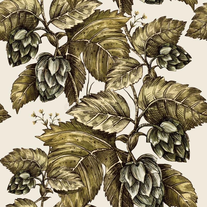 Hera de escalada da planta, lúpulo Teste padrão floral sem emenda Ilustração Handmade ilustração royalty free