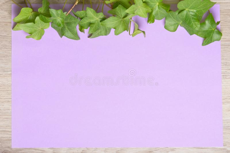 Hera no papel da cor foto de stock royalty free