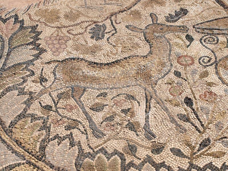 heraclea lyncestis Macedonia mozaika zdjęcie royalty free