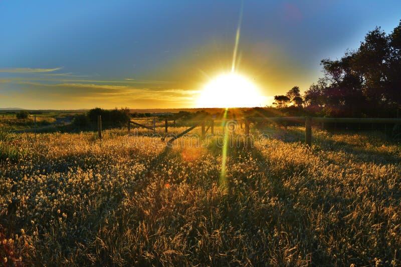 Heraus hinterer Sonnenuntergang lizenzfreie stockfotos