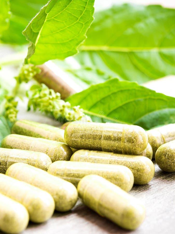 Herb capsule royalty free stock photos