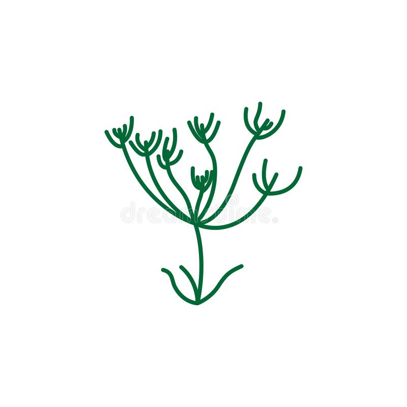 Herb, caraway icon. Element of herb icon for mobile concept and web apps. Detailed Herb, caraway icon can be used for web and royalty free illustration