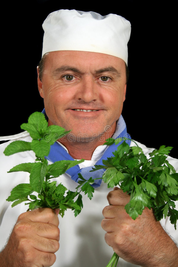 Download Herb Chef 1 stock photo. Image of boss, chef, herbs, professional - 2101078