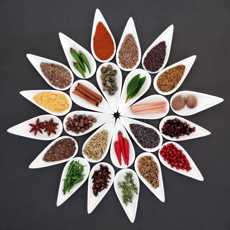 Download Herb Czosnków Bay Kardamonowi Liści Pieprzowe Spice Waniliowe Rosemary Soli Obraz Stock - Obraz złożonej z świeży, kolekcja: 53792861