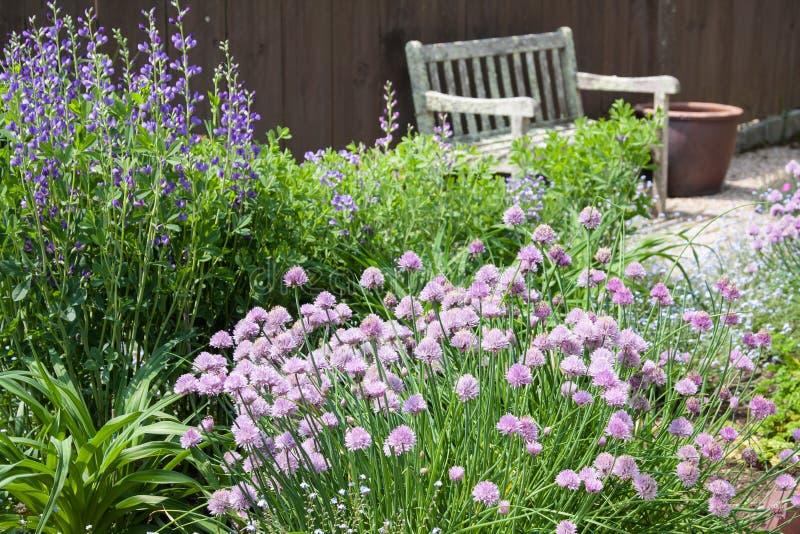 Herb Garden fotografia stock libera da diritti