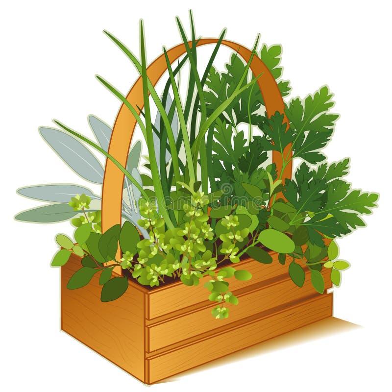 Free Herb Garden In Wooden Basket Royalty Free Stock Photos - 10020508