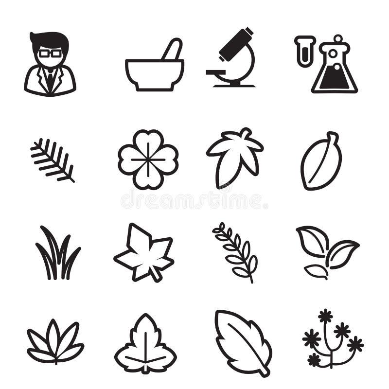 Herb icons set. Vector illustration graphic design stock illustration