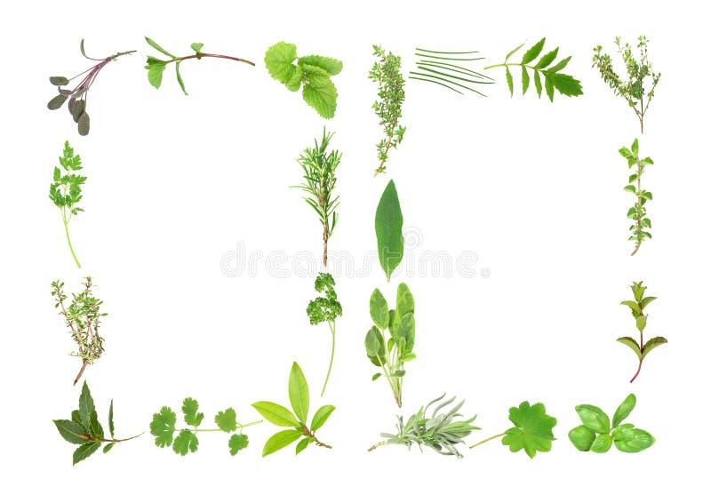 herb liści abstrakcyjne royalty ilustracja