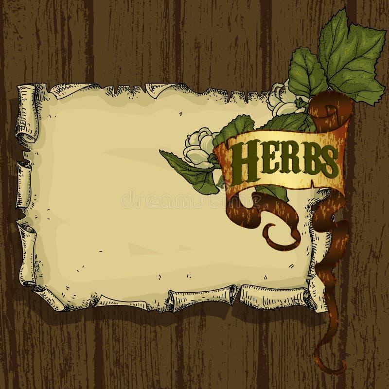 Download Herb naturalnych ilustracja wektor. Ilustracja złożonej z apteka - 53779845