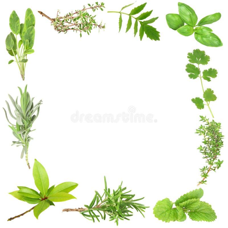 herb organiczne