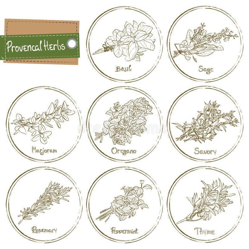 herb provencal royalty ilustracja
