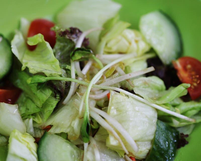 Herb salad Thai food. Close up royalty free stock image
