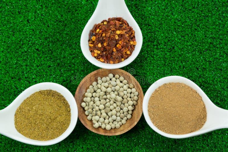 Herb seasonings royalty free stock photo