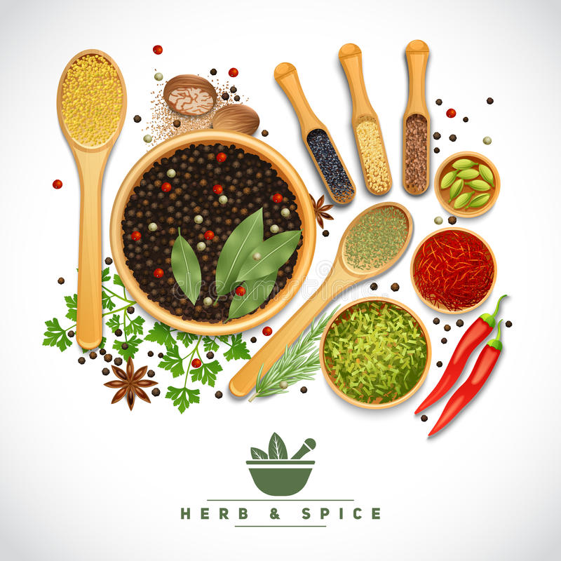 Herb And Spice Poster royalty-vrije illustratie
