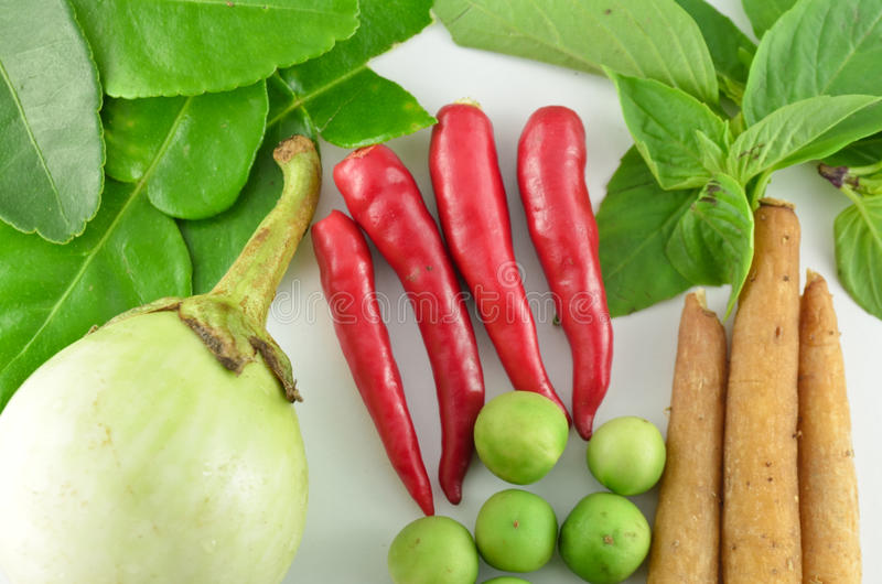 Herb and spicy ingredients for making Thai food stock image