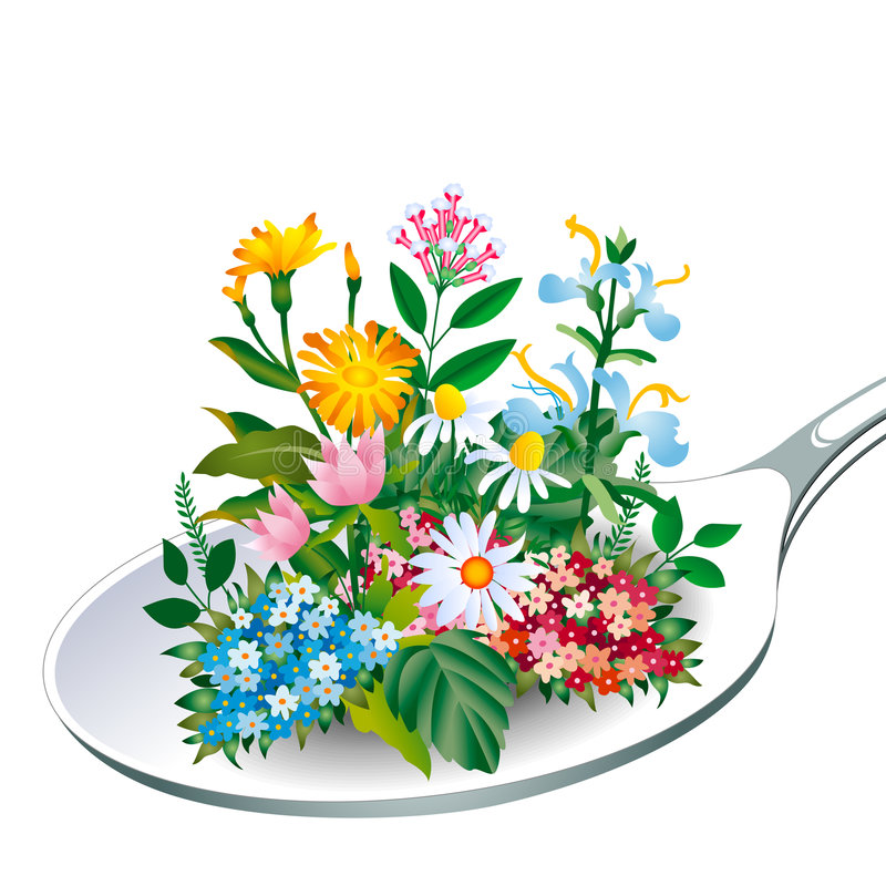 Herb - Spoon of health. Beauty in nature vector illustration
