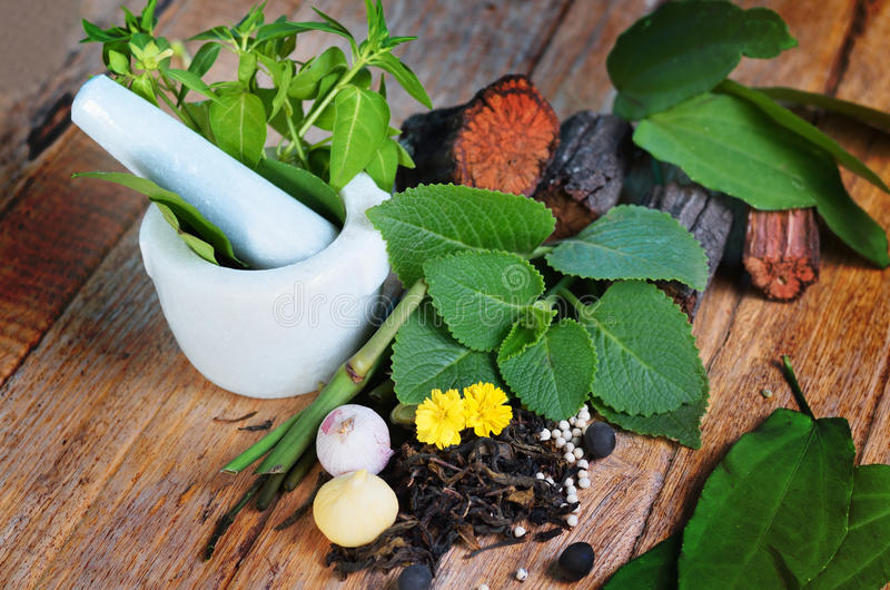 Herb with still life concept. Herb on wood background with still life concept royalty free stock photos