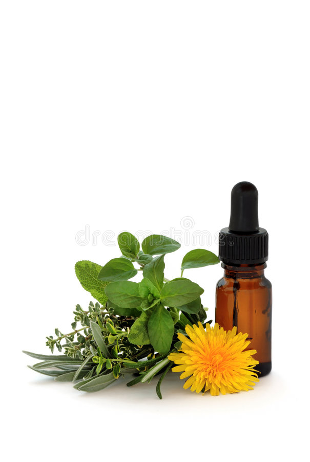 Herb Therapy. Herb leaf sprigs of lavender, sage, thyme and oregano with a dandelion flower and aromatherapy essential oil dropper bottle, over white background stock images