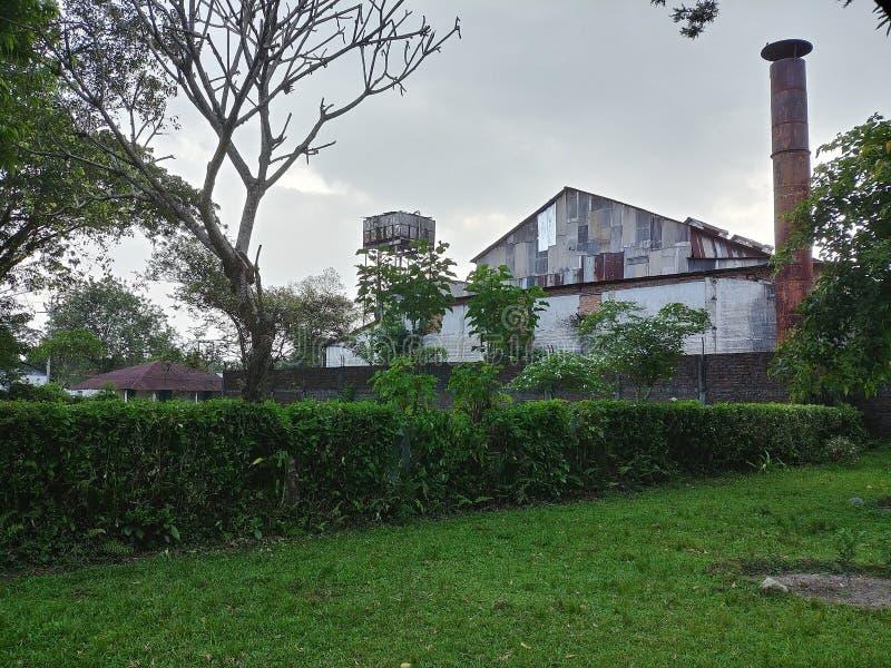 Herbaciana fabryka w Herbacianym ogródzie lokalizować w Dooars, zachodni Bengal, India fotografia royalty free