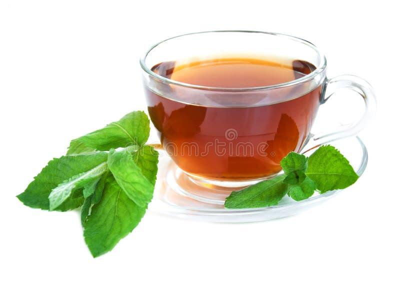 Herbaciana filiżanka z nowymi liśćmi zdjęcia stock