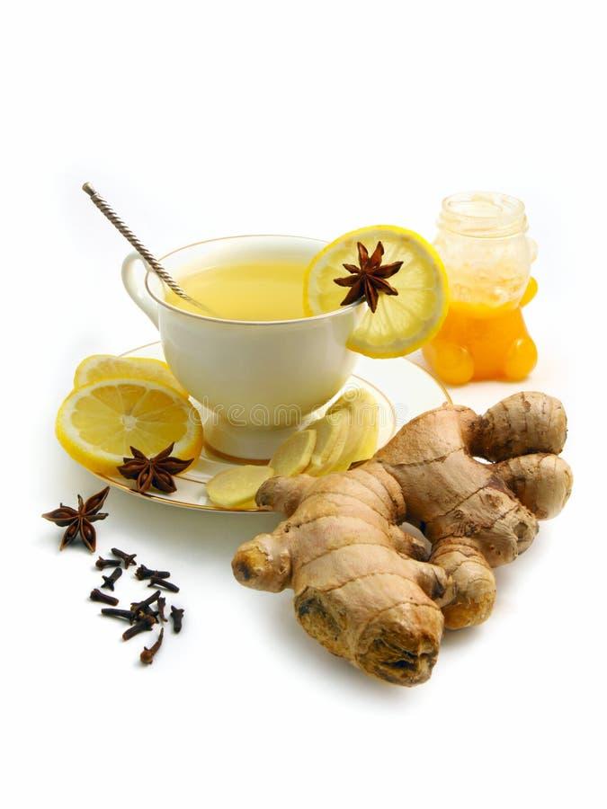 herbaciane cytryn imbirowe pikantność obraz stock