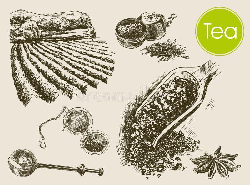 Herbacianej ceremonii tło royalty ilustracja