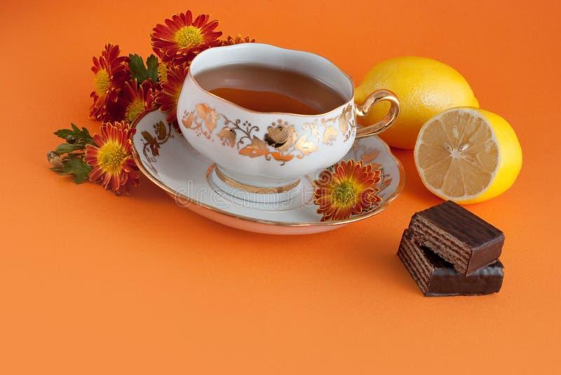 herbaciany czas zdjęcia royalty free