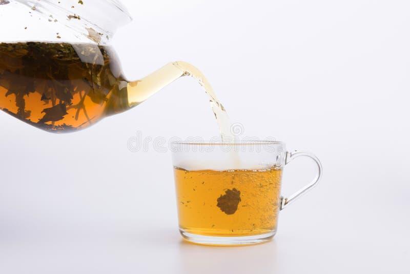 Herbaciany dolewanie w filiżance na bielu zdjęcie stock