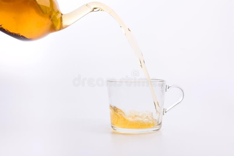 Herbaciany dolewanie w filiżance na bielu zdjęcie royalty free