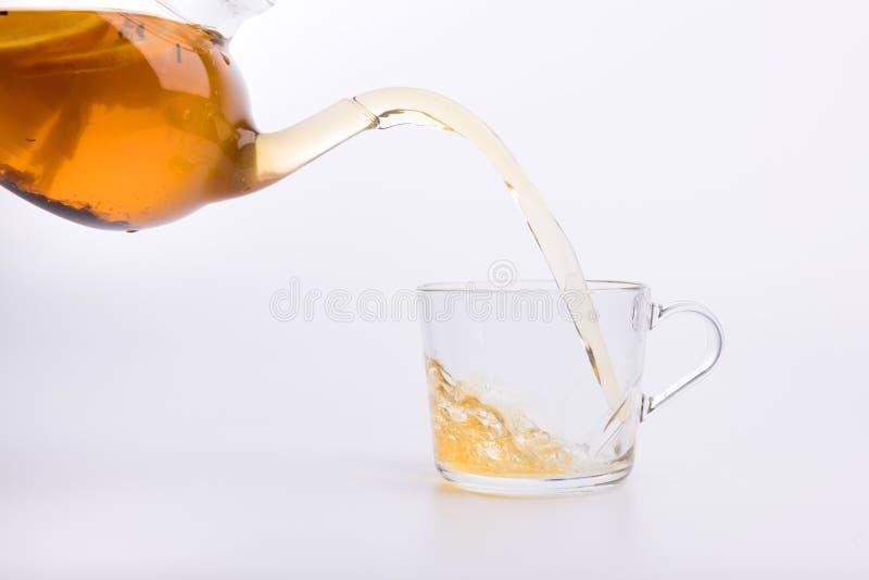 Herbaciany dolewanie w filiżance na bielu obraz royalty free