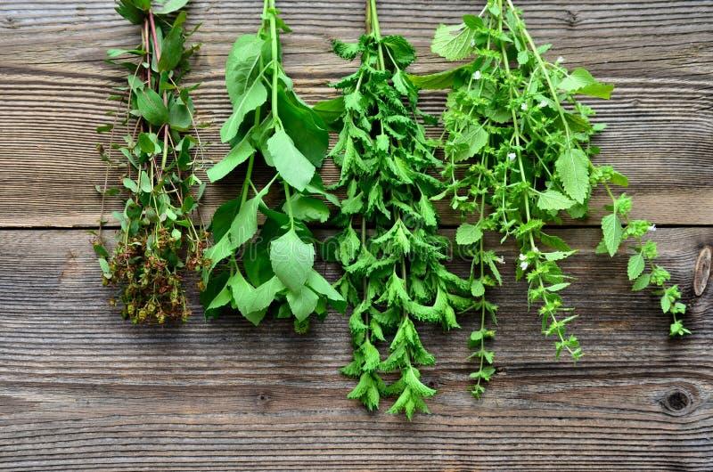 Herbaciany ziele drewna tło zdjęcia royalty free