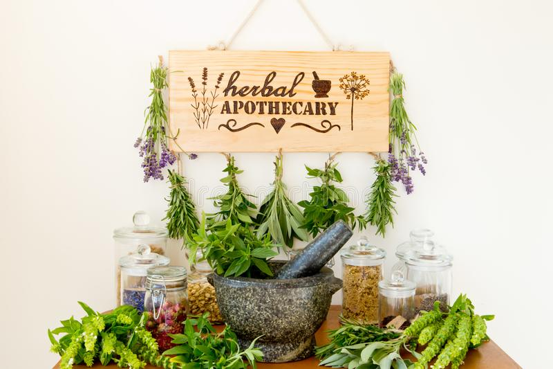 Herbal Apothecary with herb dryer, fresh herbs, jars and mortar and pestle. Herbal Apothecary with wooden herb dryer, fresh herbs, apothecary jars and stone royalty free stock photo