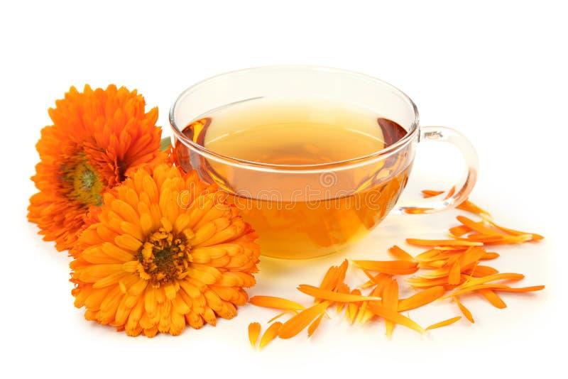 Herbal calendula tea royalty free stock image