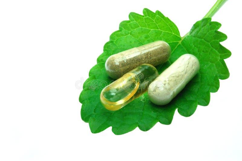 Herbal capsules on melisa leaf stock images