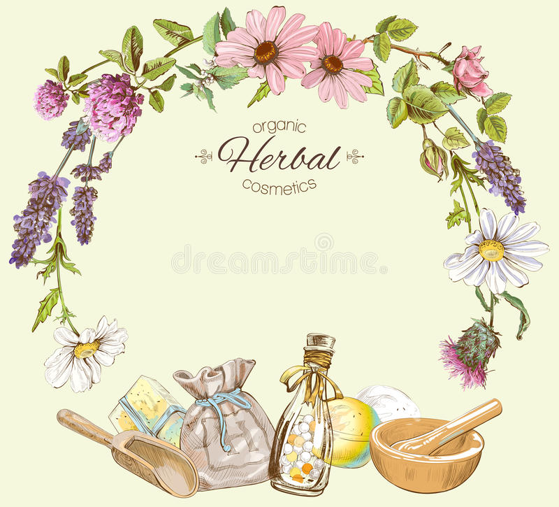 Herbal colorful round frame royalty free illustration