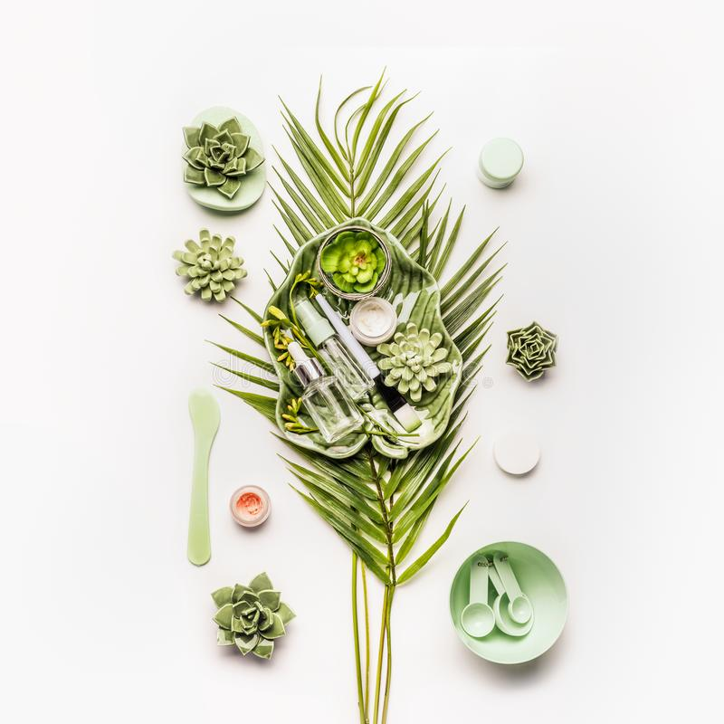Herbal cosmetic mask making. Tropical leaves and succulents with cosmetic products and accessories stock photography