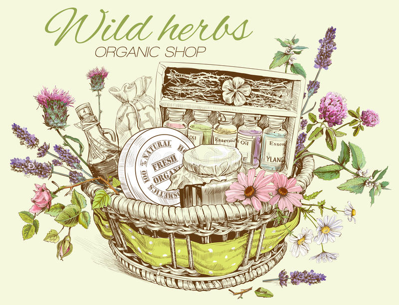 Herbal cosmetics basket vector illustration