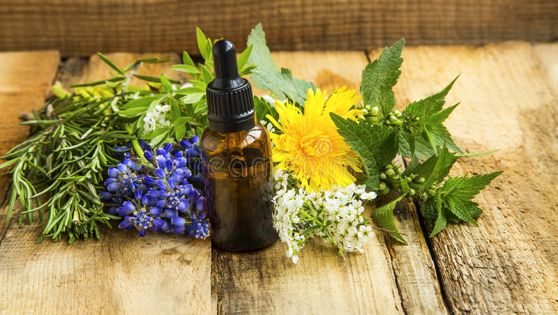 Herbal essential oil skincare bottle with plants and herbs, alternative medicine organic skincare royalty free stock image