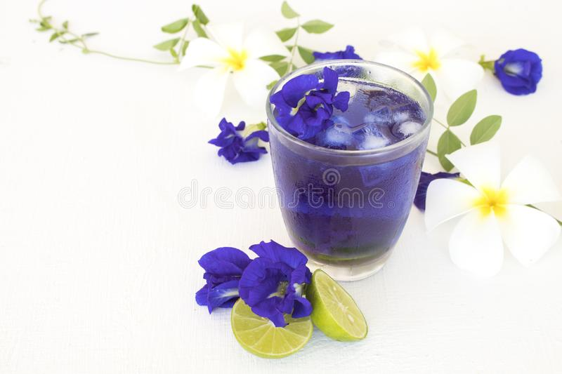 Herbal healthy drinks mix lemon with flower butterfly pea purple cold cocktail water. For health care local flora of asia arrangement flat lay style stock photography