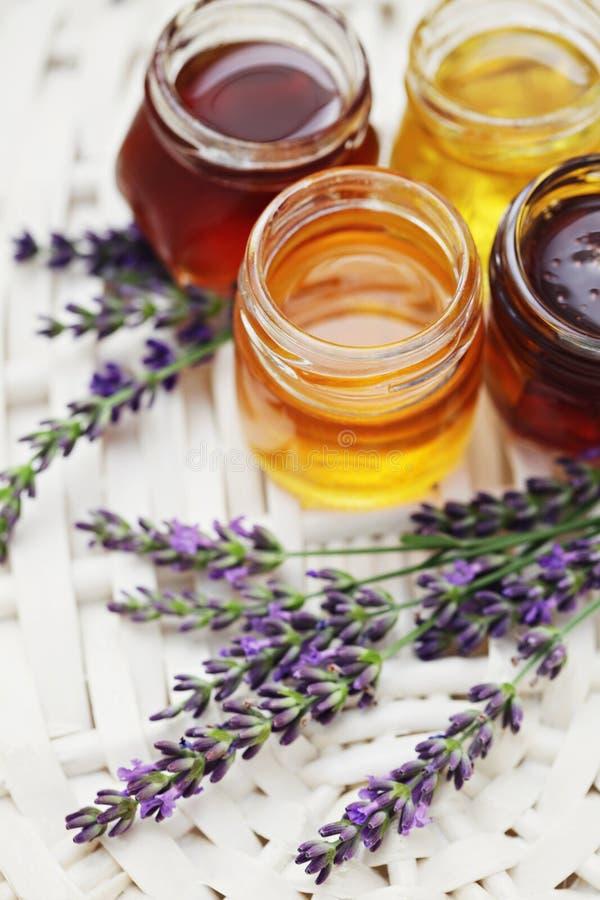 Download Herbal honey stock image. Image of herbal, remedy, natural - 21279299