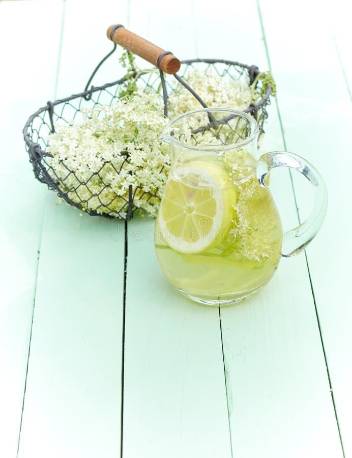Herbal infusion of fresh elderflowers and lemon stock photography