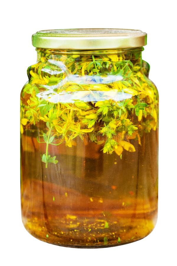 Free Herbal Infusion St. John`s Wort Stock Images - 119760704