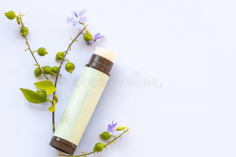 Herbal lips cura della salute per le donne che vivono allo stile di vita in inverno fotografia stock libera da diritti