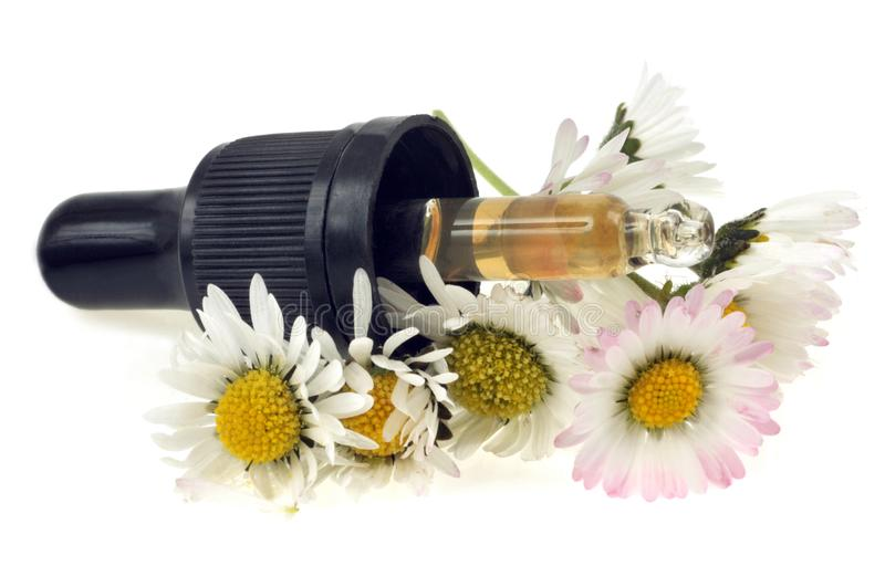 Pipette in daisies on a white background royalty free stock photo
