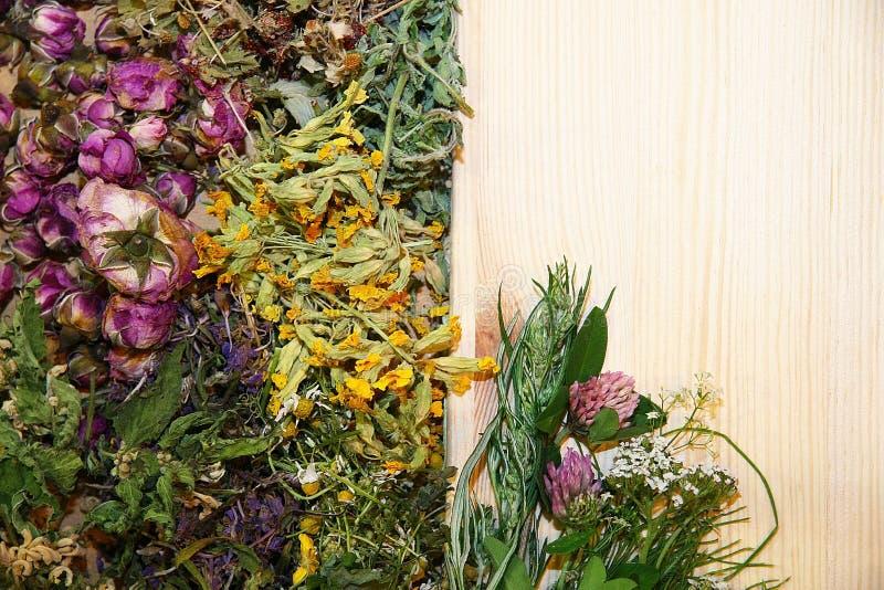 Herbal medicine bacground. Healing herbs, herbal medicine - chamomile, rose, lakspur flowers royalty free stock photos
