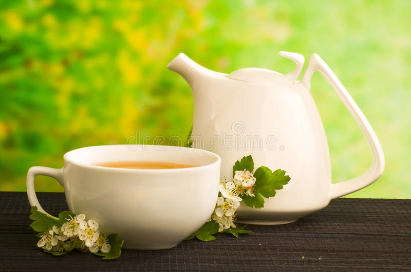 Herbal medicine, tea with hawthorn flower.  royalty free stock images