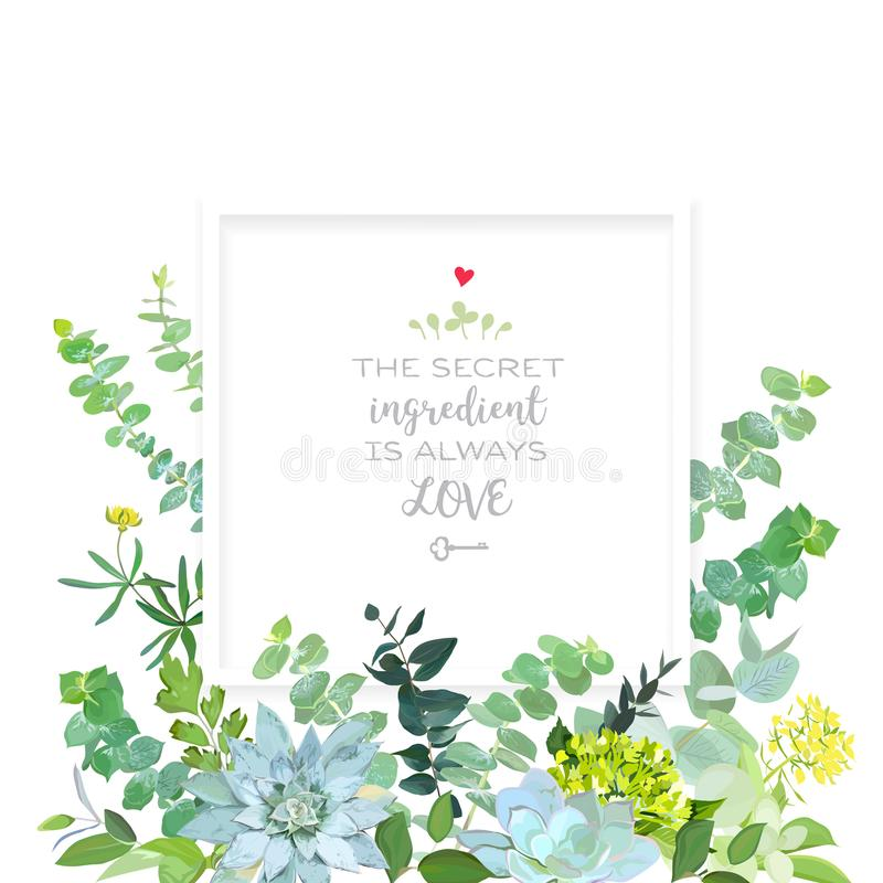 Herbal mix square vector frame box. Hand painted plants, branches, leaves, succulents and flowers on white background. Echeveria, eucalyptus,green hygrangea vector illustration