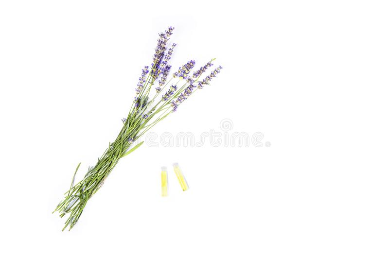 Herbal oil and lavender flowers bunch blossoms - lavandula angustifolia on white background. Essential Organic Lavender Oil stock photography
